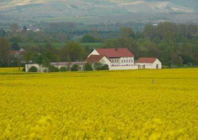 Blick auf den Karlshof im Frühling